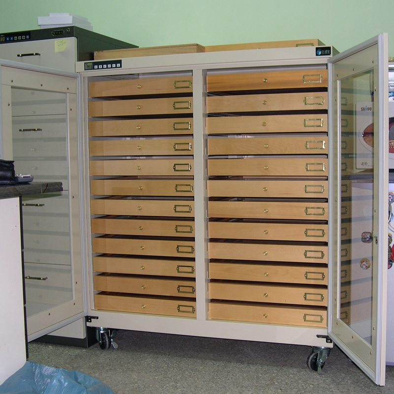 S-012 Customized Dry Cabinet for specimens