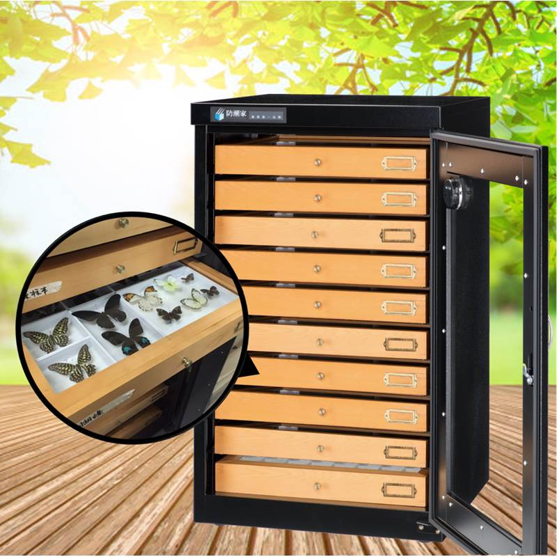 S-048 Customized Dry Cabinet for Specimen